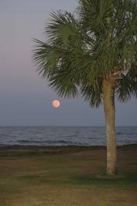 Hilton Head Beach Sunset